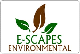 E-Scapes-Environmental Work experience