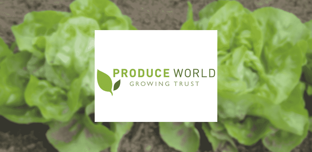 Produce-World-Slide Work experience