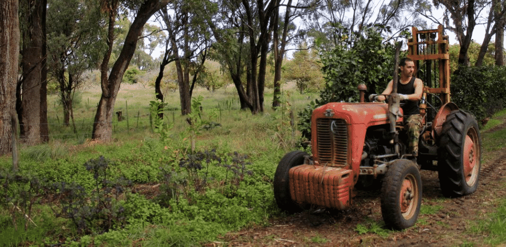 Alcheringa-Tractor-slide Work experience