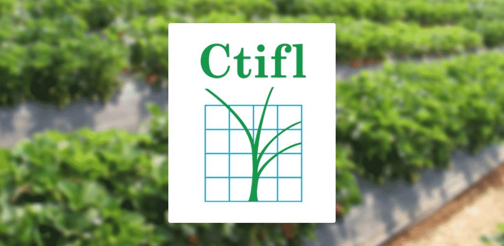 CTIFL-Slide Work experience