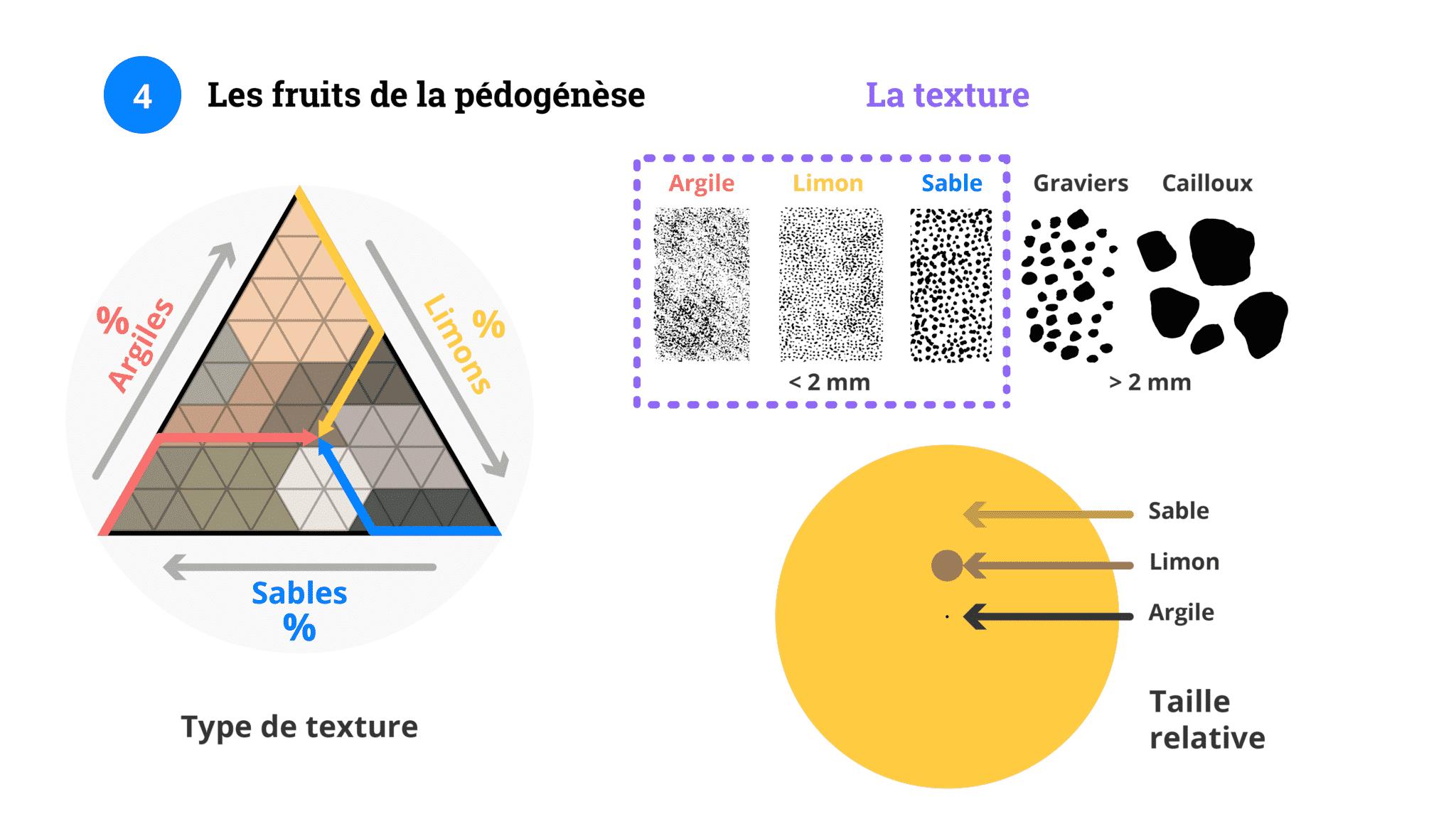 P1-M3-diapo-5-Texture-2-scaled Gallery